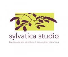 Sylvatica Studio