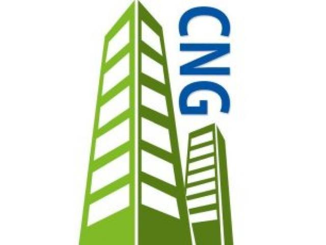 Capital Network Group - 1