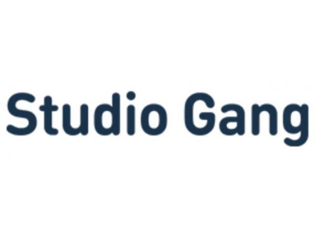 Studio Gang - 1