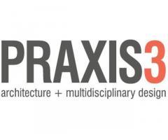 PRAXIS3
