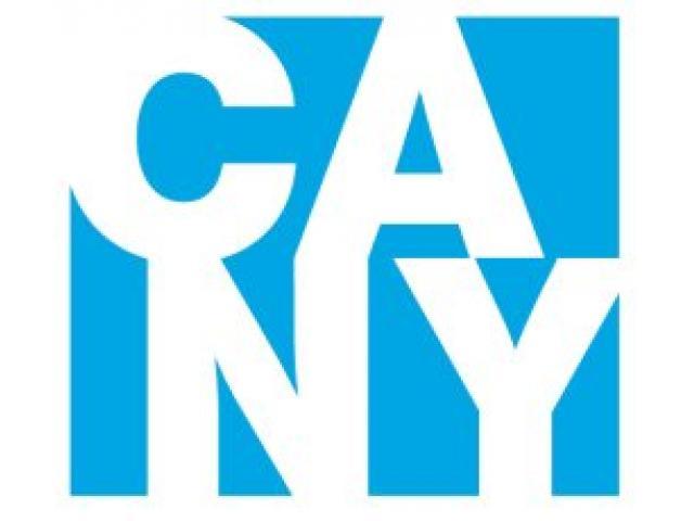 Consulting Associates of NY (CANY) - 1