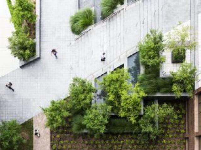 Dirtworks Landscape Architecture - 1