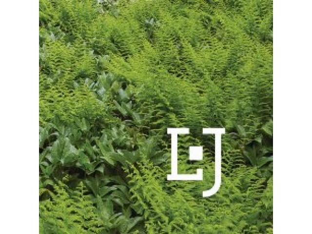 LeBlanc Jones Landscape Architects - 1